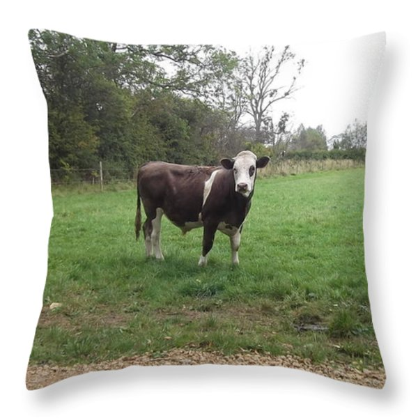 Black And White Bull Throw Pillow by John Williams