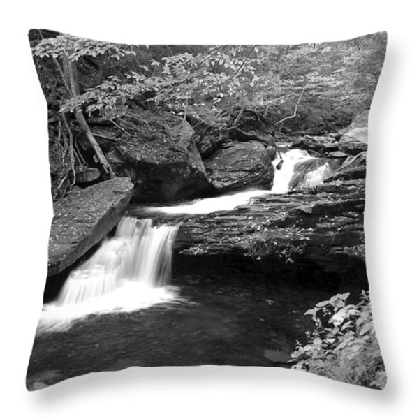 Black And White Cascade Throw Pillow by Frozen in Time Fine Art Photography