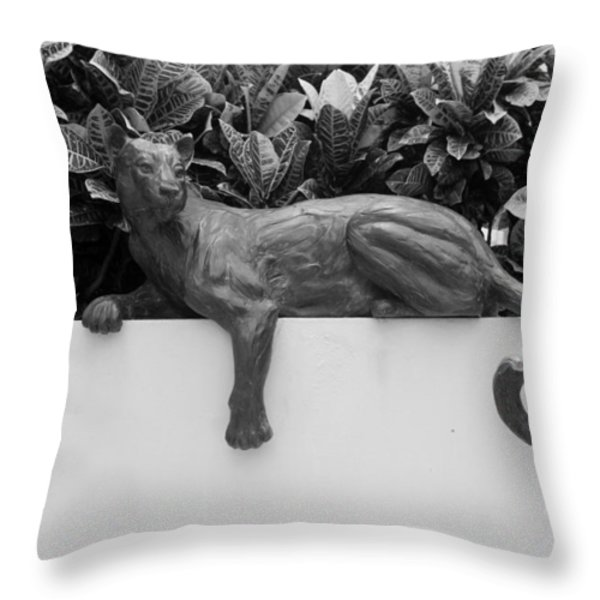 Black And White Cat Throw Pillow by Rob Hans
