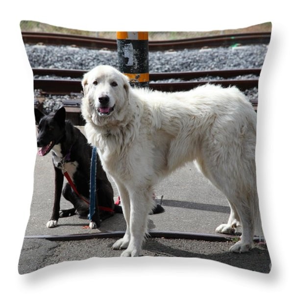 Black And White Dogs 5d25873 Throw Pillow by Wingsdomain Art and Photography