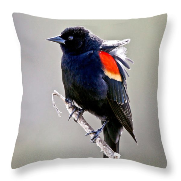 Black Bird Throw Pillow by Athena Mckinzie