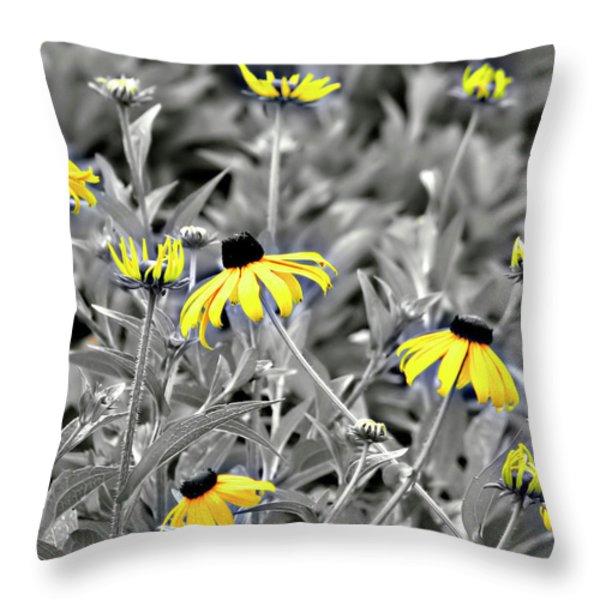 Black-eyed Susan Field Throw Pillow by Carolyn Marshall