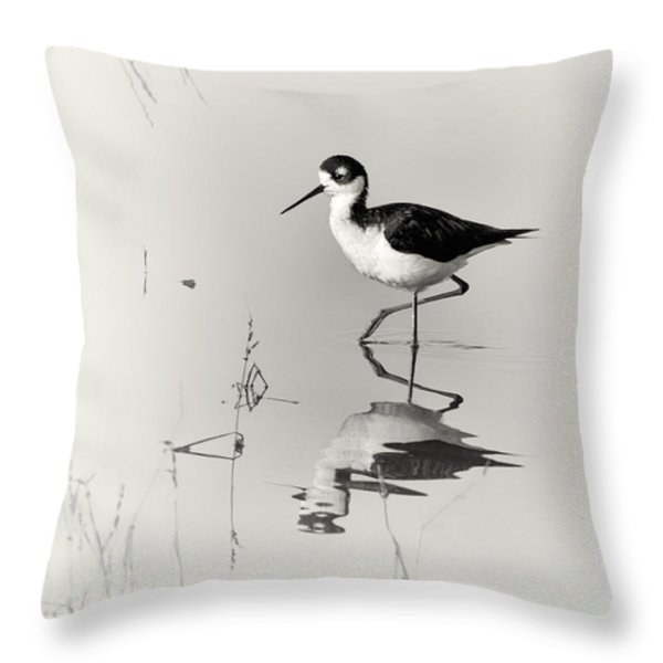 Black-necked Stilt at Carson Lake Wetlands Throw Pillow by Priscilla Burgers