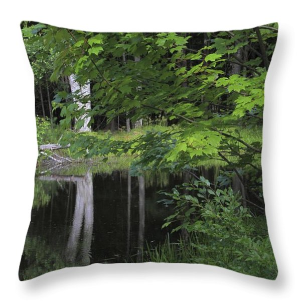 Black Pond and Maple Throw Pillow by Colleen Williams