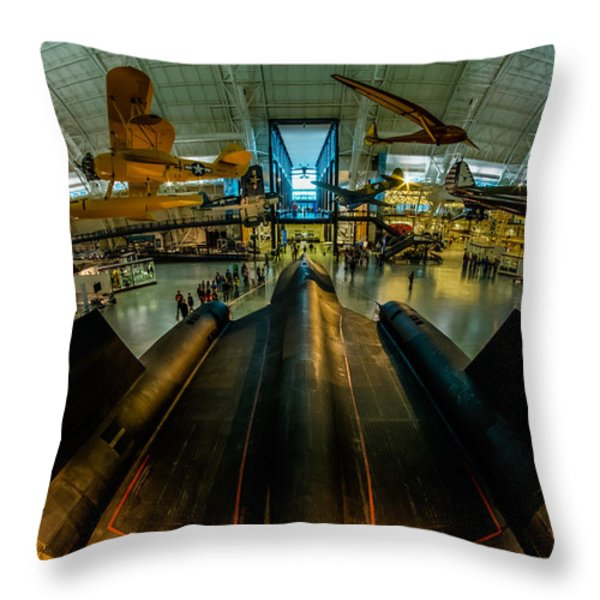 Blackbird Fisheye Throw Pillow by Randy Scherkenbach