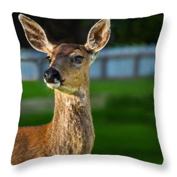 Blacktail Portrait Throw Pillow by Robert Bales