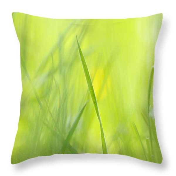 Blades Of Grass - Green Spring Meadow - Abstract Soft Blurred Throw Pillow by Matthias Hauser