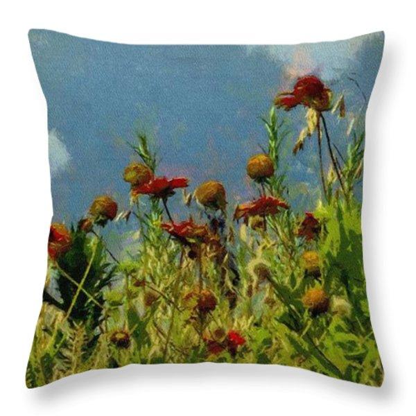 Blanketing The Sky Throw Pillow by Jeff Kolker