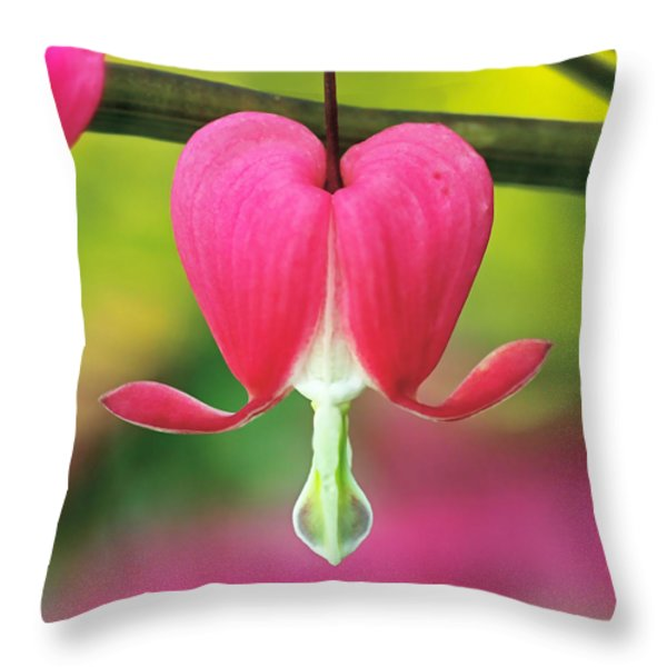 Bleeding Heart Throw Pillow by Rona Black