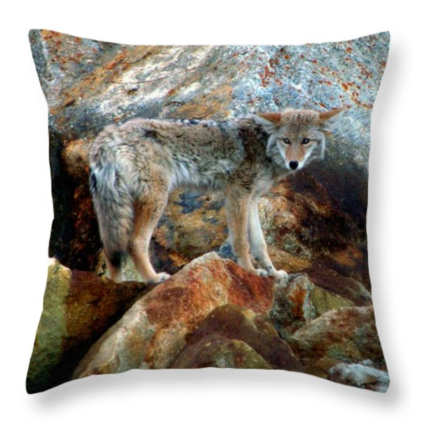 Blending In Nature Throw Pillow by Karen Wiles