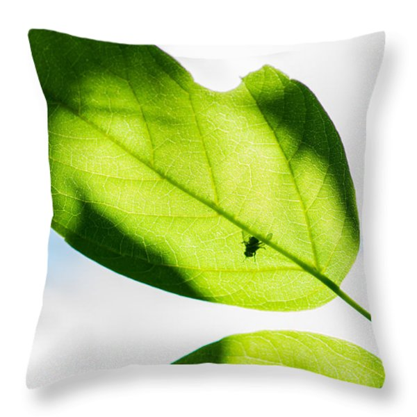 Blessed Days Of Warmth And Sun Throw Pillow by Alexander Senin