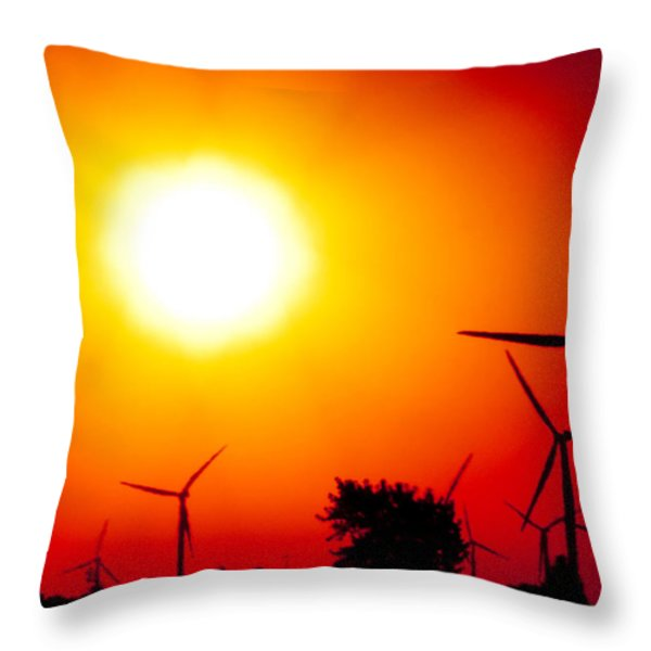 Blistering Heat Throw Pillow by Jim Finch