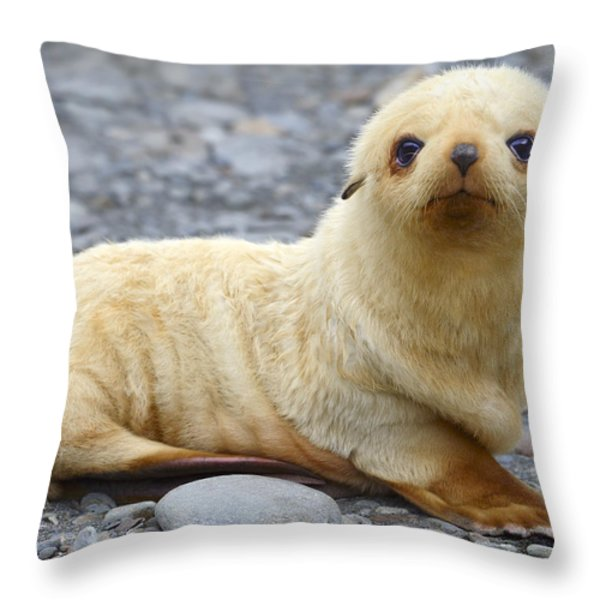 Blondie Throw Pillow by Tony Beck