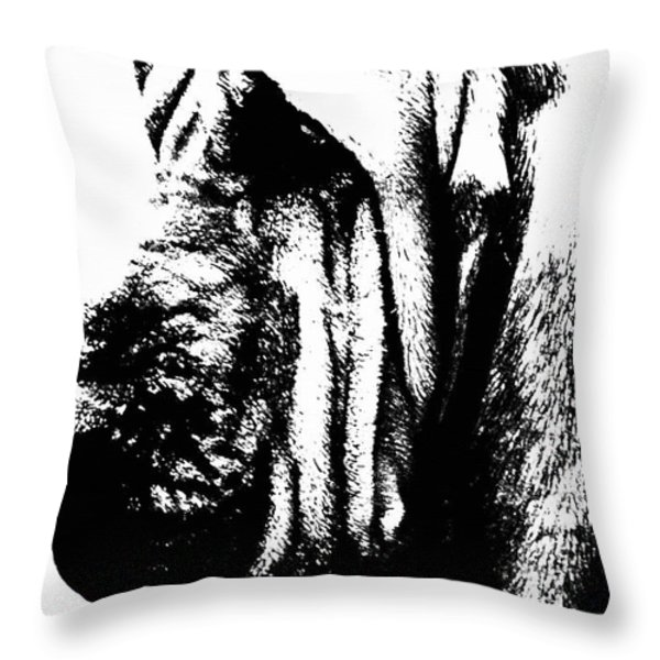 Bloodhound - It's Black And White - By Sharon Cummings Throw Pillow by Sharon Cummings
