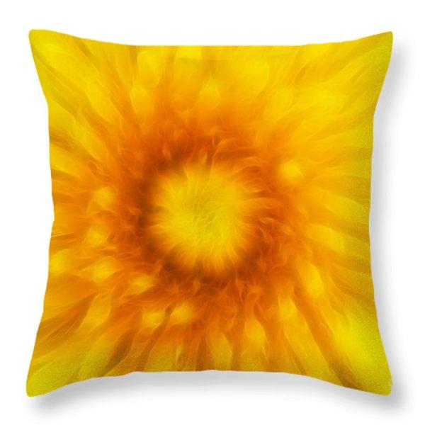 Bloom Of Dandelion Throw Pillow by Michal Boubin