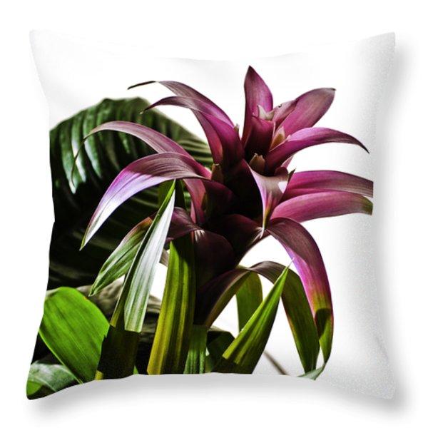 Blooming Bromeliad Throw Pillow by Christi Kraft