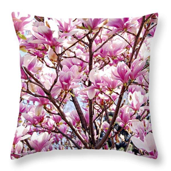 Blooming magnolia Throw Pillow by Elena Elisseeva