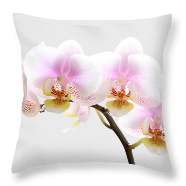 Blooms on White Throw Pillow by Juergen Roth