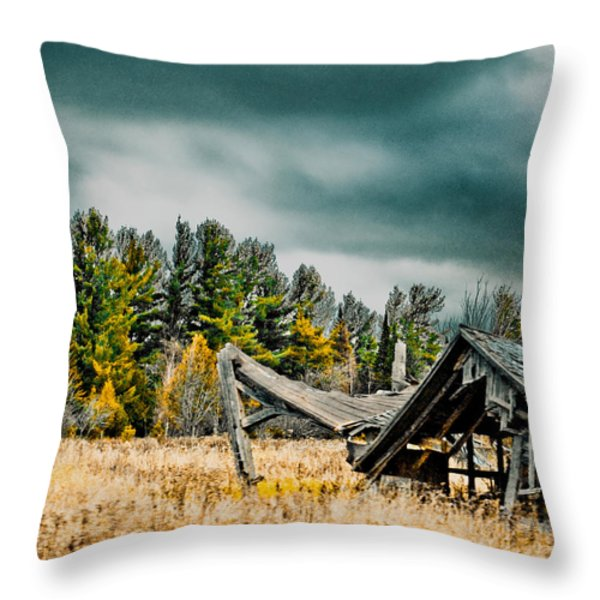 Blown Away Throw Pillow by Maggy Marsh