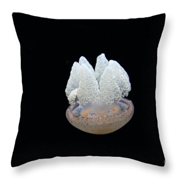 Blubber Jelly Fish 5D24960 Throw Pillow by Wingsdomain Art and Photography