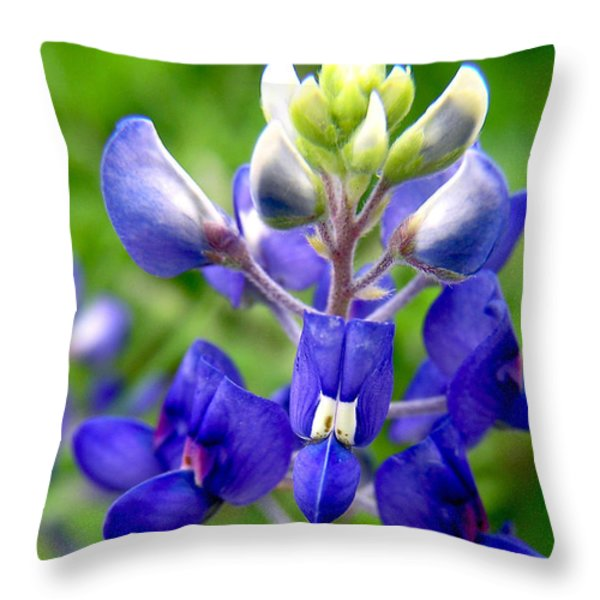 Blue Bonnet Throw Pillow by Adam Johnson