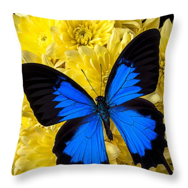 Blue Butterfly On Poms Throw Pillow by Garry Gay