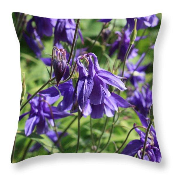 Blue Columbine Flower Throw Pillow by Carol Groenen