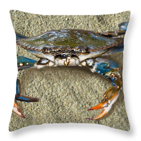 Blue Crab Confrontation Throw Pillow by Sandi OReilly