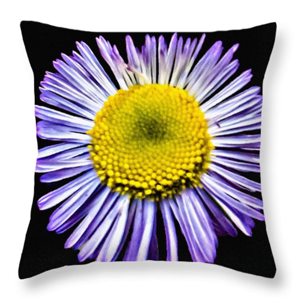 Blue Daisy Painting Throw Pillow by Bob and Nadine Johnston