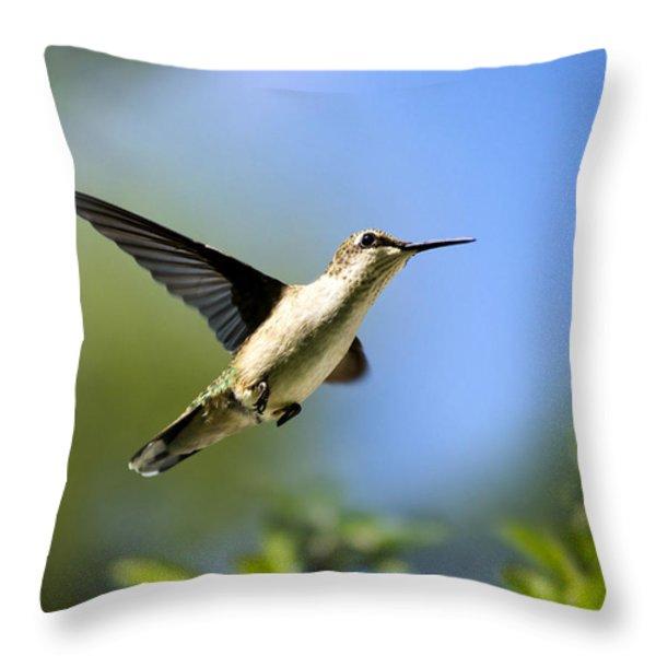 Blue Green Hummingbird Art Throw Pillow by Christina Rollo