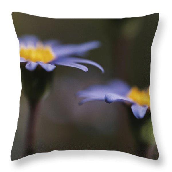 Blue Haze Throw Pillow by Caitlyn  Grasso