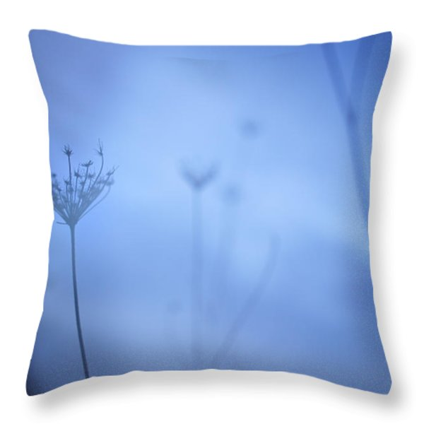 Blue Hour In The Paradise Throw Pillow by Guido Montanes Castillo