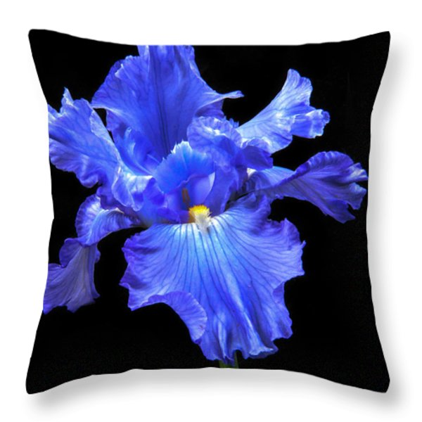 Blue Iris Throw Pillow by Robert Bales