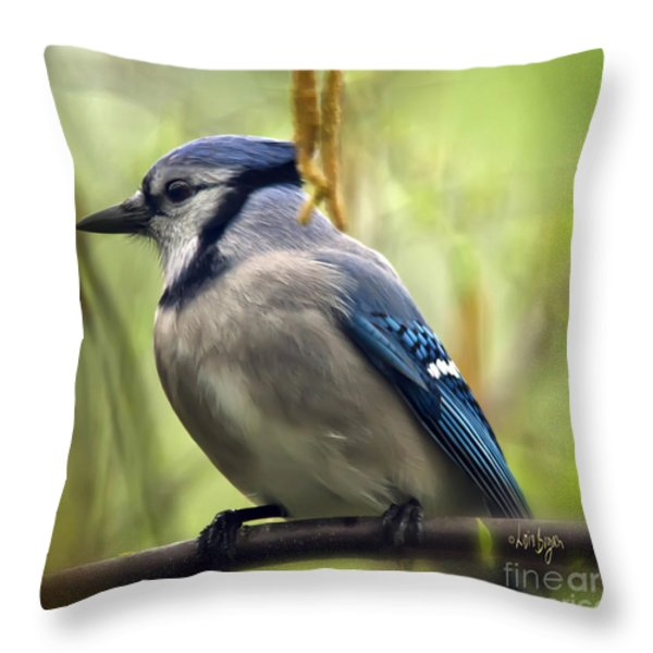 Blue Jay On A Misty Spring Day - Square Format Throw Pillow by Lois Bryan