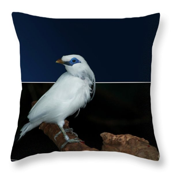 Blue Mask Bandit Bird Throw Pillow by Thomas Woolworth