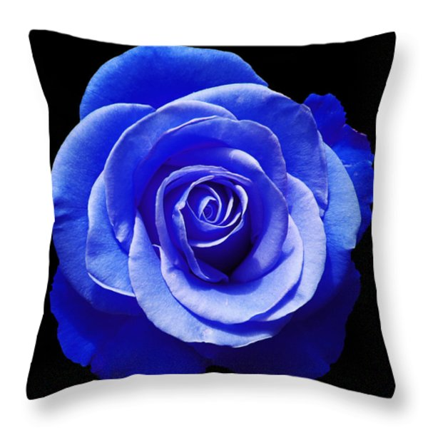 Blue Rose Throw Pillow by Aimee L Maher Photography and Art