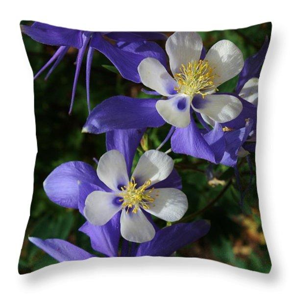 Blue Saphire Columbine Throw Pillow by Bruce Bley