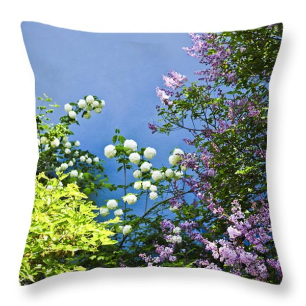 Blue wall with flowers Throw Pillow by Elena Elisseeva
