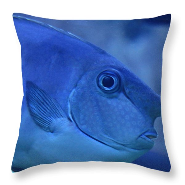Bluespine Unicorn fish Throw Pillow by Karon Melillo DeVega