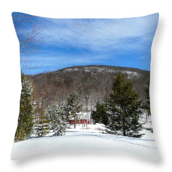 Boathouse In Winter Throw Pillow by Avis  Noelle