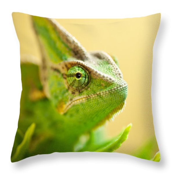 Bob The Chameleon  Throw Pillow by Samuel Whitton