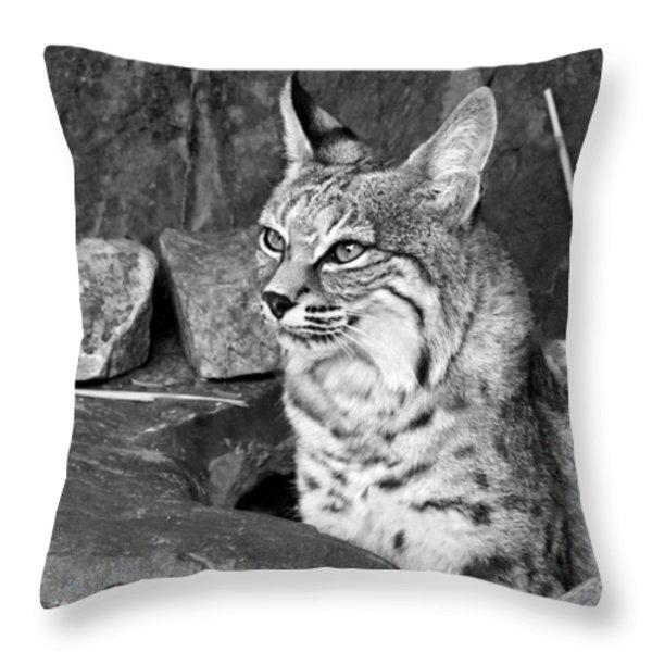 Bobcat Throw Pillow by Nikolyn McDonald