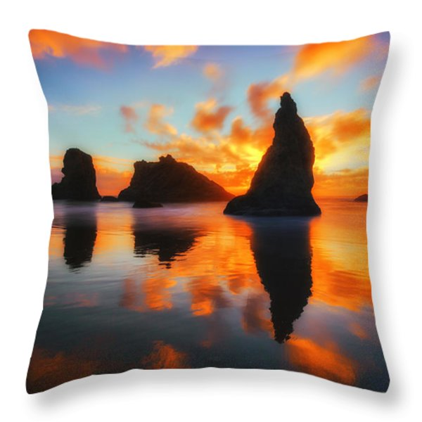 Boldly Bandon Throw Pillow by Darren  White