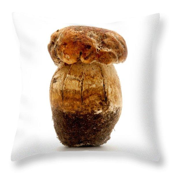 Boletus edulis Throw Pillow by Fabrizio Troiani