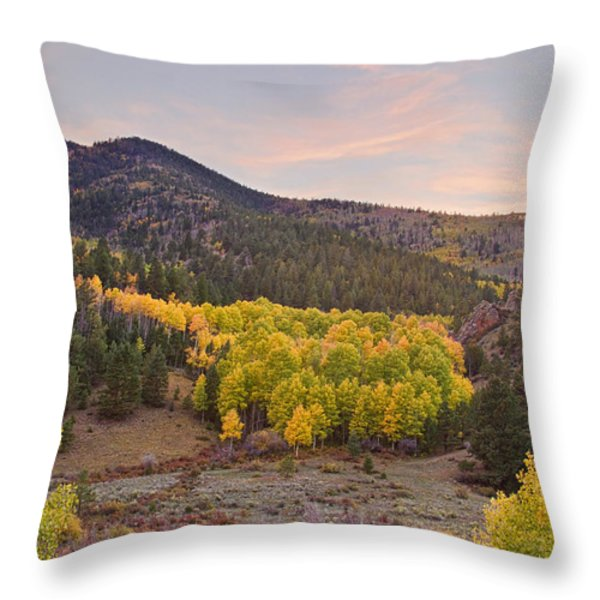 Bonanza Autumn View Throw Pillow by James BO  Insogna