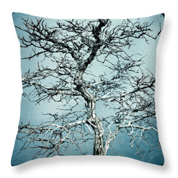 Bonsai Throw Pillow by Gary Heller