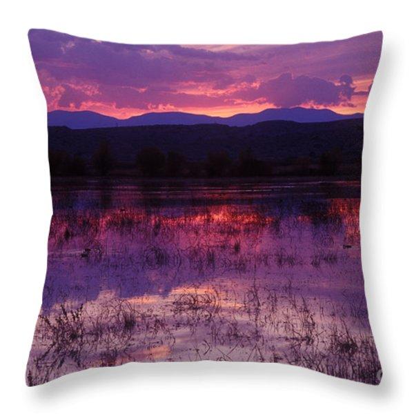 Bosque Sunset - Purple Throw Pillow by Steven Ralser