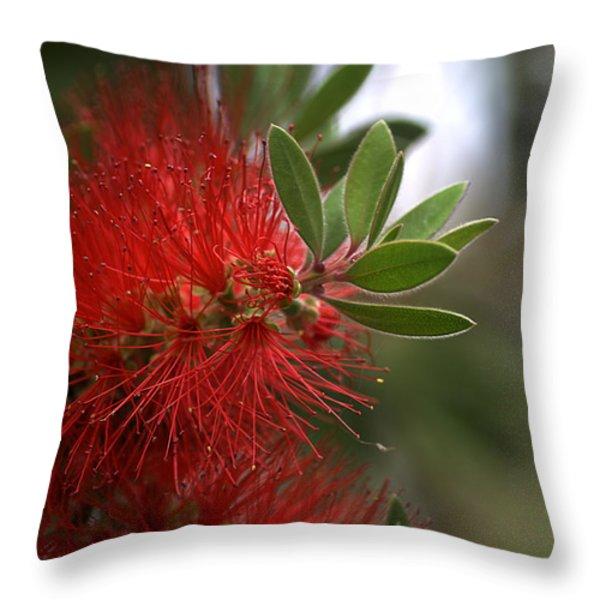 Bottlebrush In Red Throw Pillow by Joy Watson