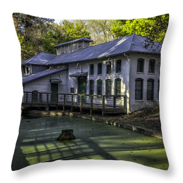 Boulware Springs Water Works Throw Pillow by Lynn Palmer