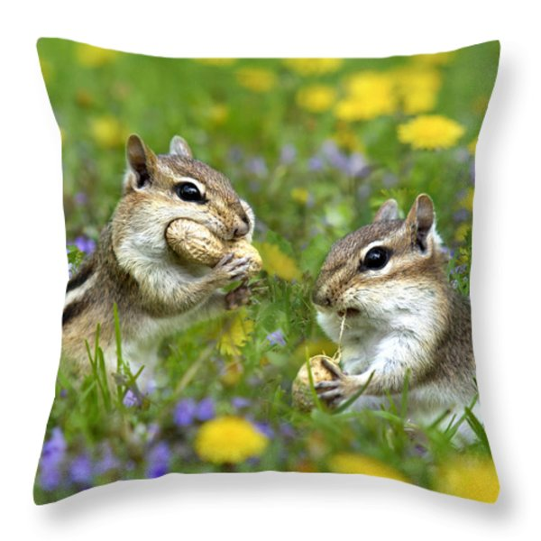 Bountiful Generosity Throw Pillow by Christina Rollo